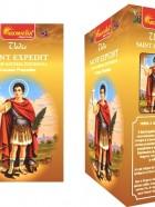Encens Masala Vedic SAINT-EXPEDIT 15g