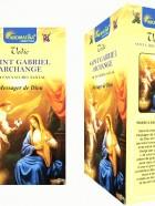 Encens Masala Vedic SAINT-GABRIEL 15g
