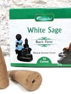CONES BACK FLOW (Pour PE Fontaine résine) – WHITE SAGE (Sauge Blanche)